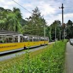kirnitzschtalbahn_-_bad_schandau